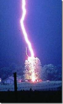 lightning_tree