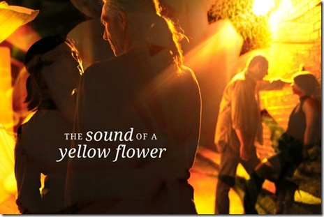 Sound of Yellow Flower poster 2
