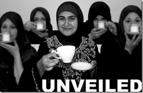 "Rohina Malik, in the poster for her powerful one-woman show ""Unveiled"" - currently part of the ""What's Next Series"" at Next Theatre of Evanston"