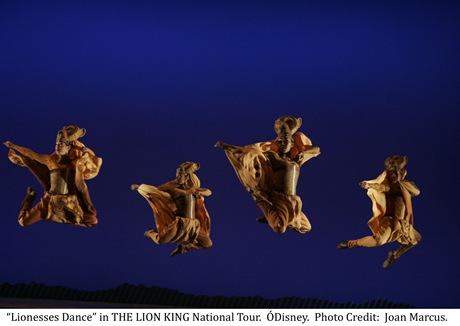 Lionesses Dance - Disney's Lion King