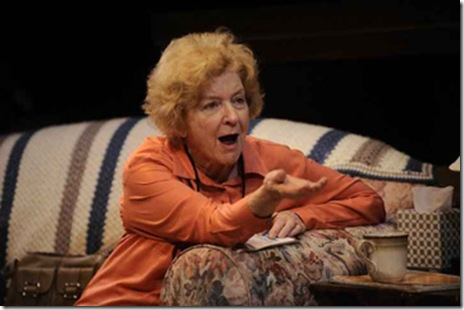 Mary Ann Thebus in Victory Garden's 'The Boys Room' by Joel Drake Johnson.  Photo by Liz Lauren.